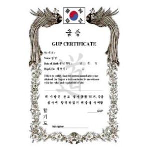 Hapkido Gup Certificate #5002007